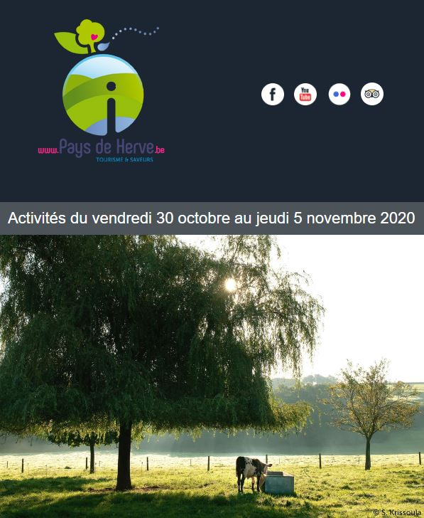 Newsletter du 30 octobre au 5 novembre 2020